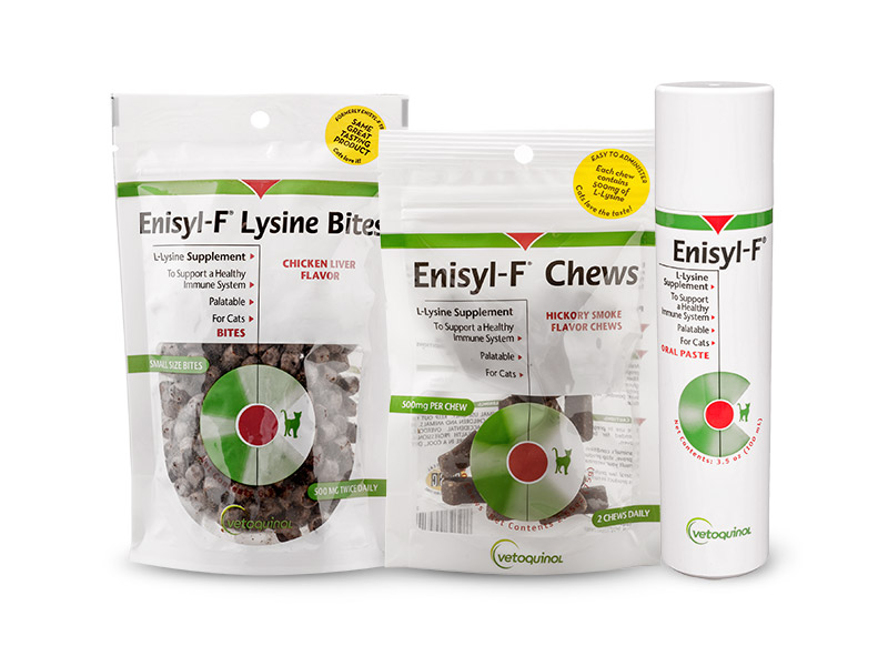 Enisyl-F Lysine Supplements for Cats
