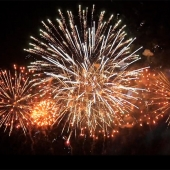 Helping your pet cope with fireworks