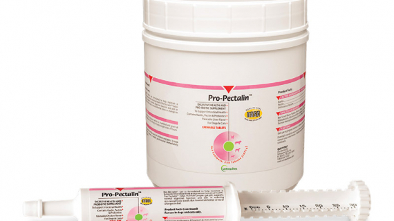 Pro-Pectalin gel and tablets for dogs and cats